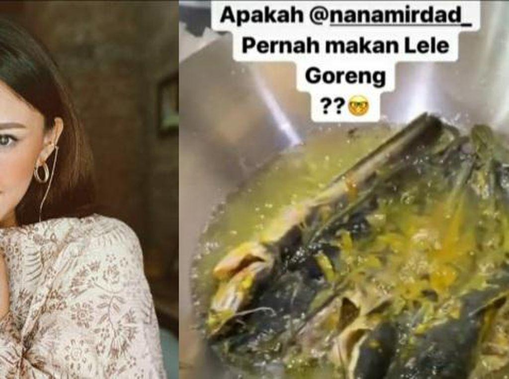 Nana Mirdad Akui Belum Pernah Makan Lele Goreng hingga Jengkol