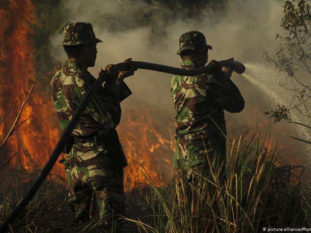 Bencana Ganda yang Dihadapi Indonesia: Karhutla dan COVID-19