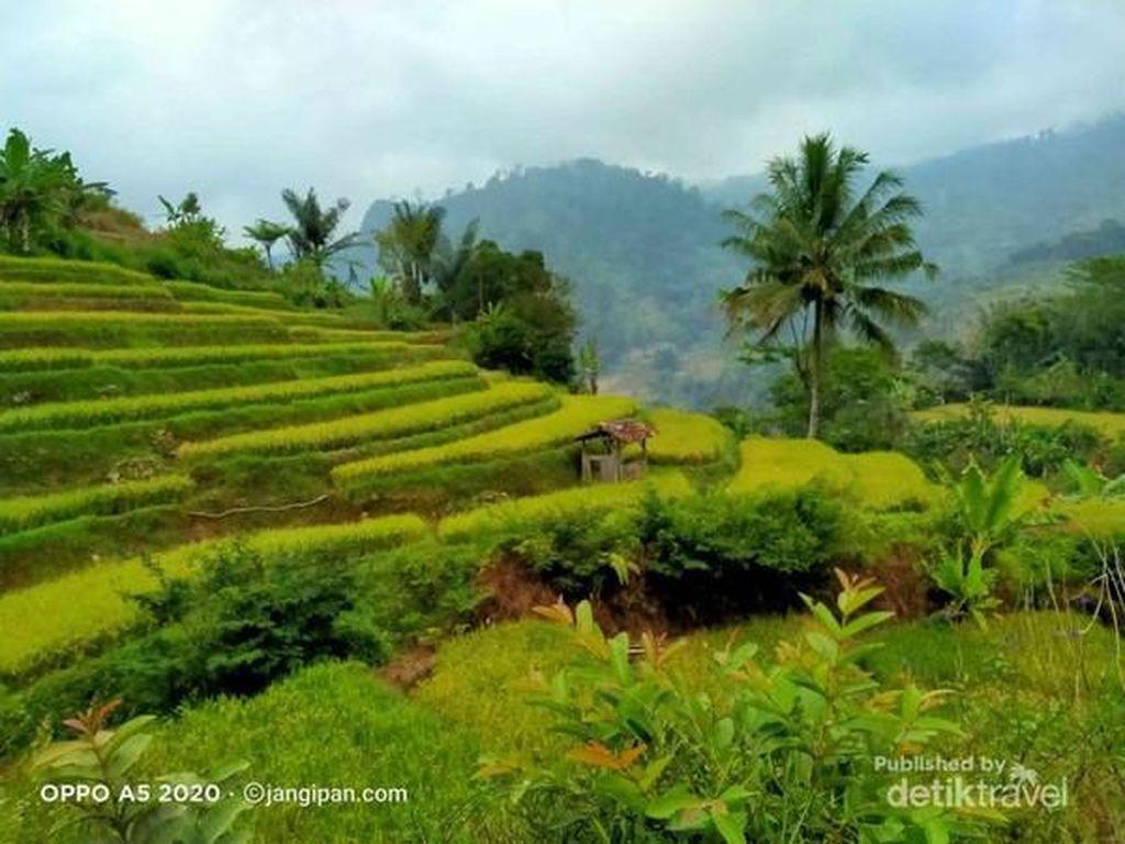 Ini Gunung Jampang, Destinasi Desa Asri di Garut Selatan