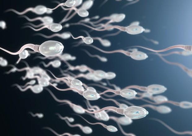 Konsumsi obat-obatan terlarang berhubungan langsung dengan penurunan jumlah sperma. Bahkan alkohol yang berlebihan menurunkan kadar testosteron serta kualitas dan kuantitas sperma pada pria.
