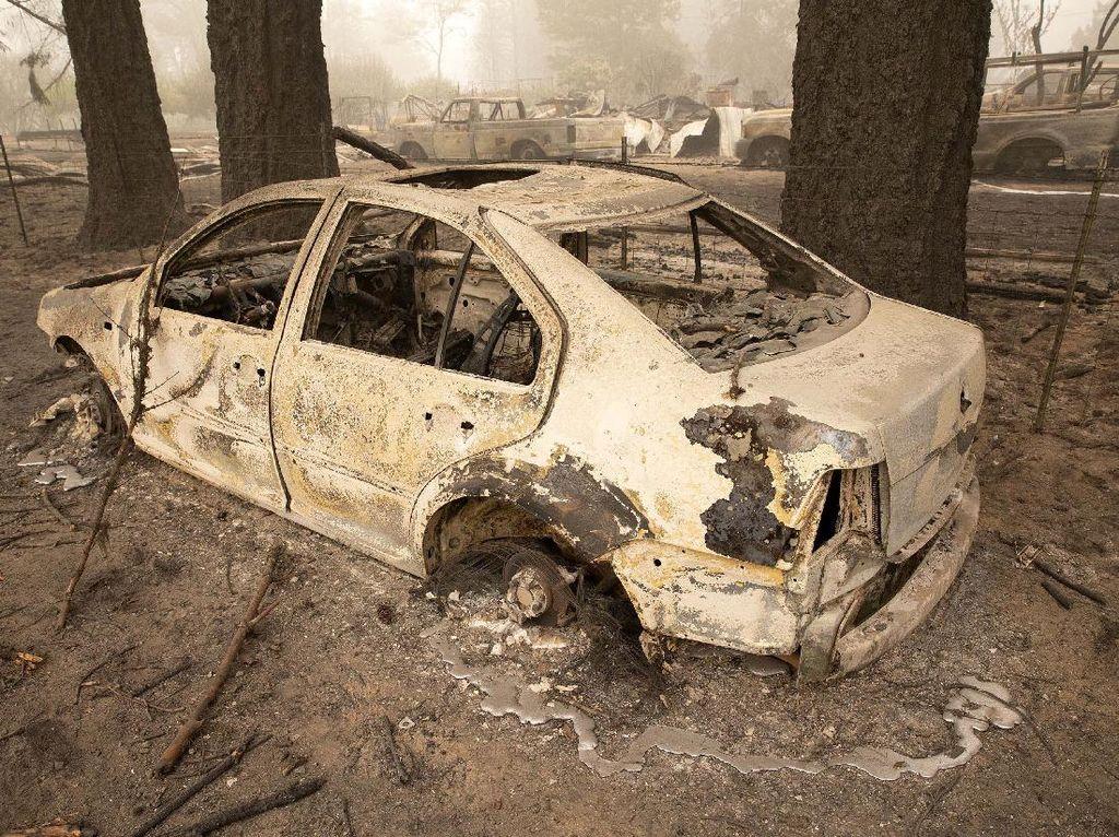 Mobil-mobil Ini Ludes Akibat Kebakaran Hutan