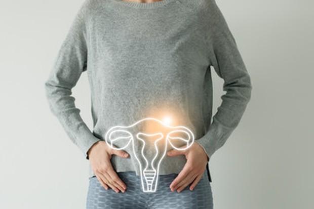 Leher rahim (serviks) merupakan bagian terbawah dari rahim. Area ini biasanya sedikit meluas ke dalam vagina dan dari sinilah darah menstruasi keluar dari rahim.