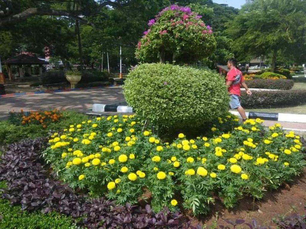 Foto: Taman Bunga Cantik di Malaysia, Bukan Indonesia