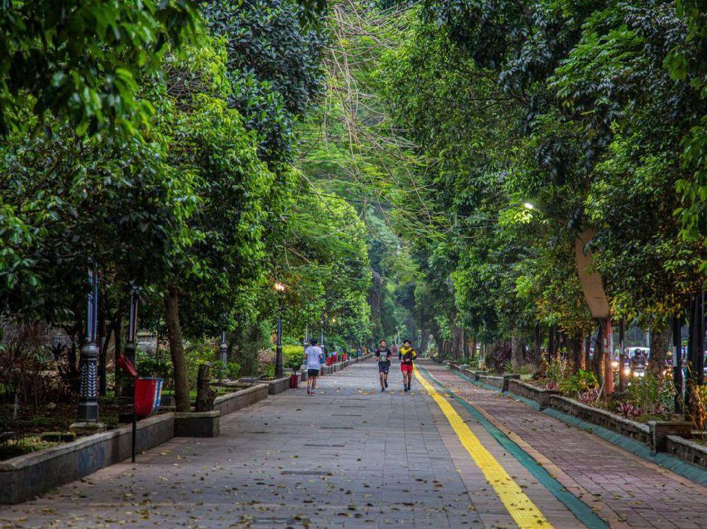 5 Tempat Wisata Ramah Kantong di Bogor, Cocok untuk Akhir Pekan