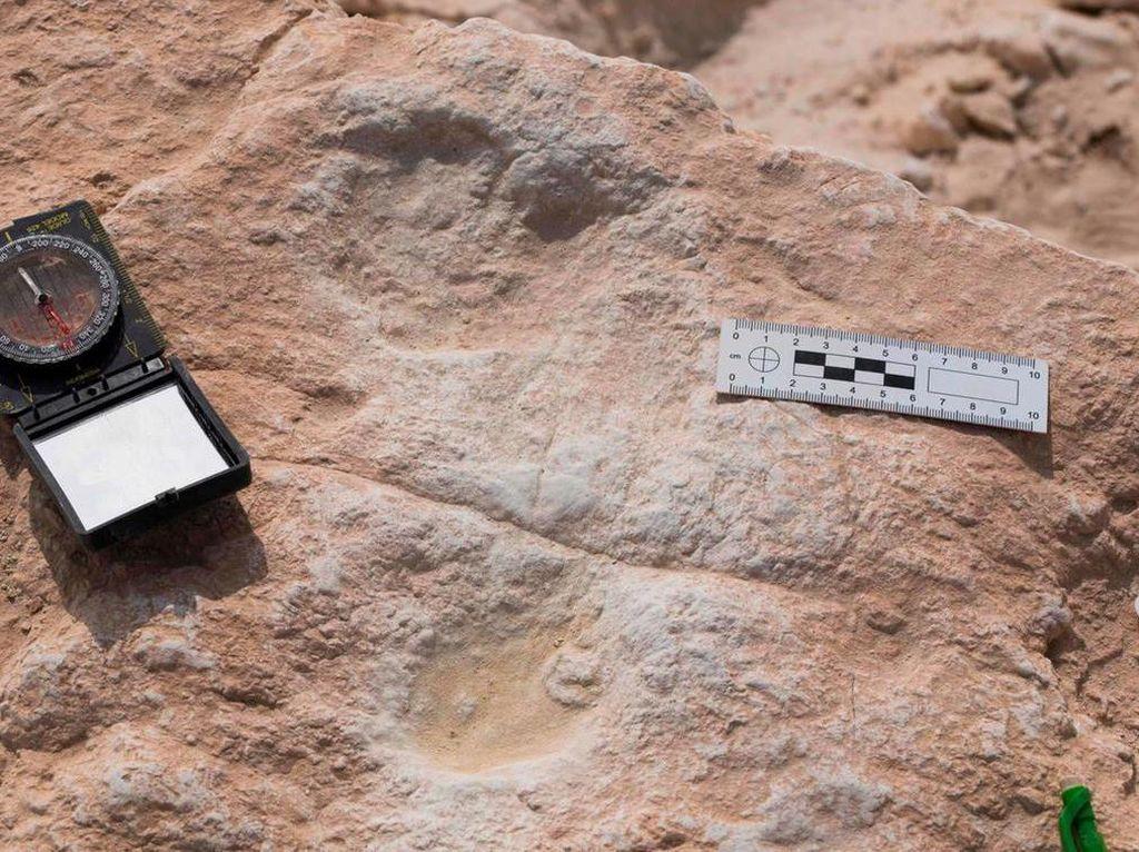 Jejak Kaki Manusia dari 120 Ribu Tahun Lalu Ditemukan di Arab Saudi