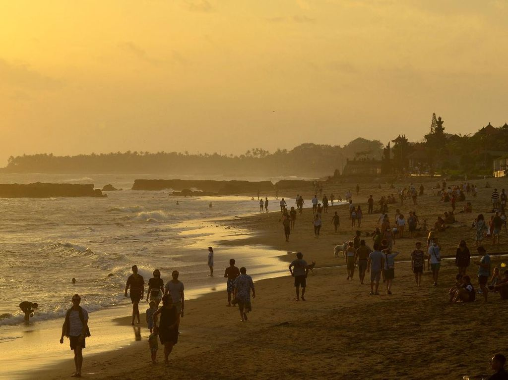 Sopir Turis di Bali Ini Putuskan Pulang Kampung dan Bertani