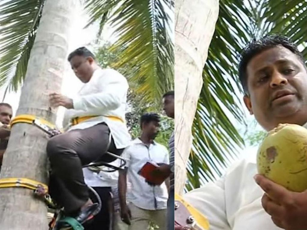 Menteri di Sri Lanka Ini Viral Usai Gelar Jumpa Pers di Atas Pohon Kelapa