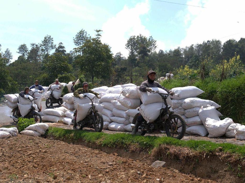 Meraup Rezeki Lewat Ojek Pertanian di Gunung Sindoro
