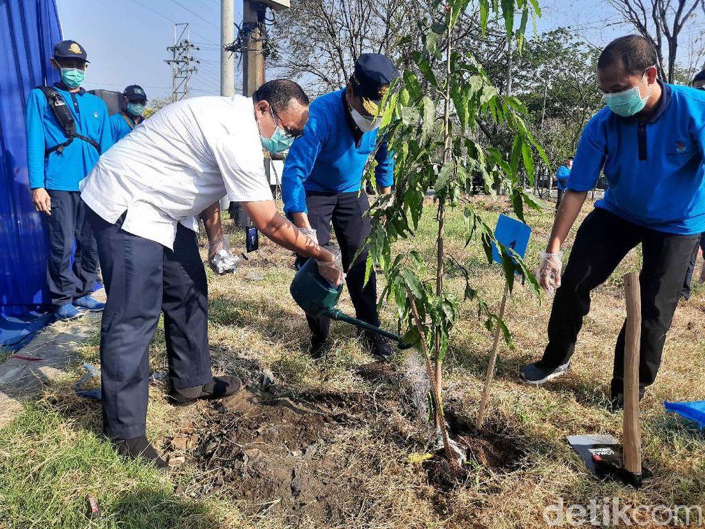 Tanjung Perak Lakukan Penghijauan Peringati Hari Perhubungan Nasional