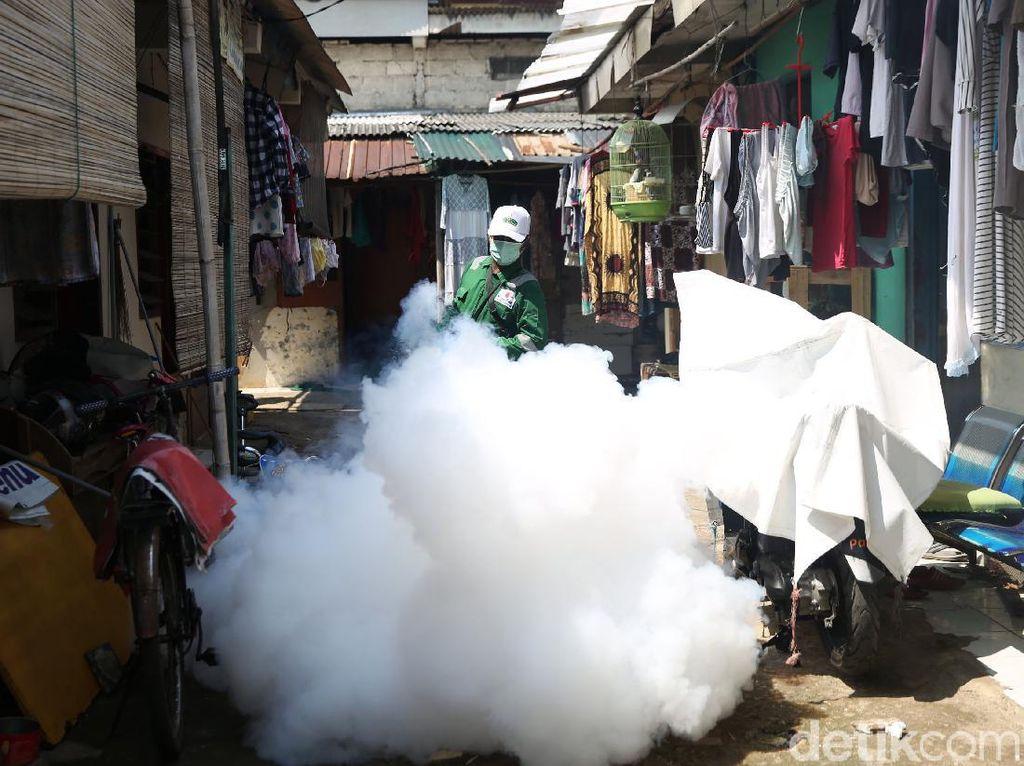 Fogging Cegah Demam Berdarah di Pondok Kelapa