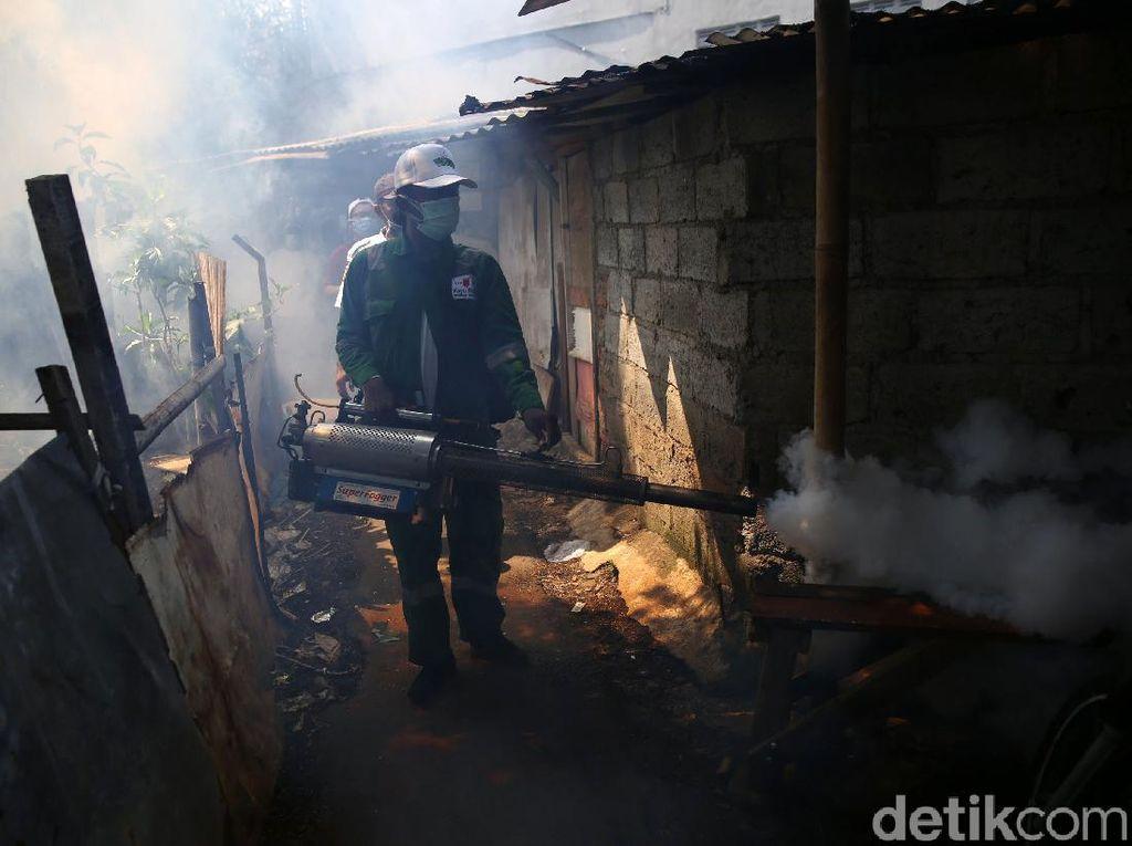 DBD Menyerang di Tengah Pandemi COVID-19, 9 Meninggal di Klaten