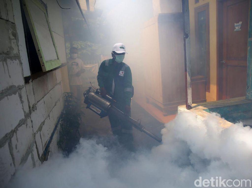 Puncak Musim Hujan, DBD Tewaskan 9 Orang di Klaten