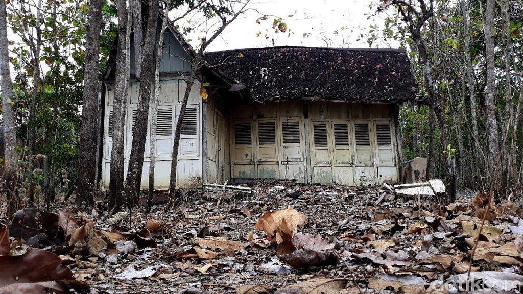 Foto-foto Rumah Tua yang Viral di Tengah Kebun Jati Gunungkidul