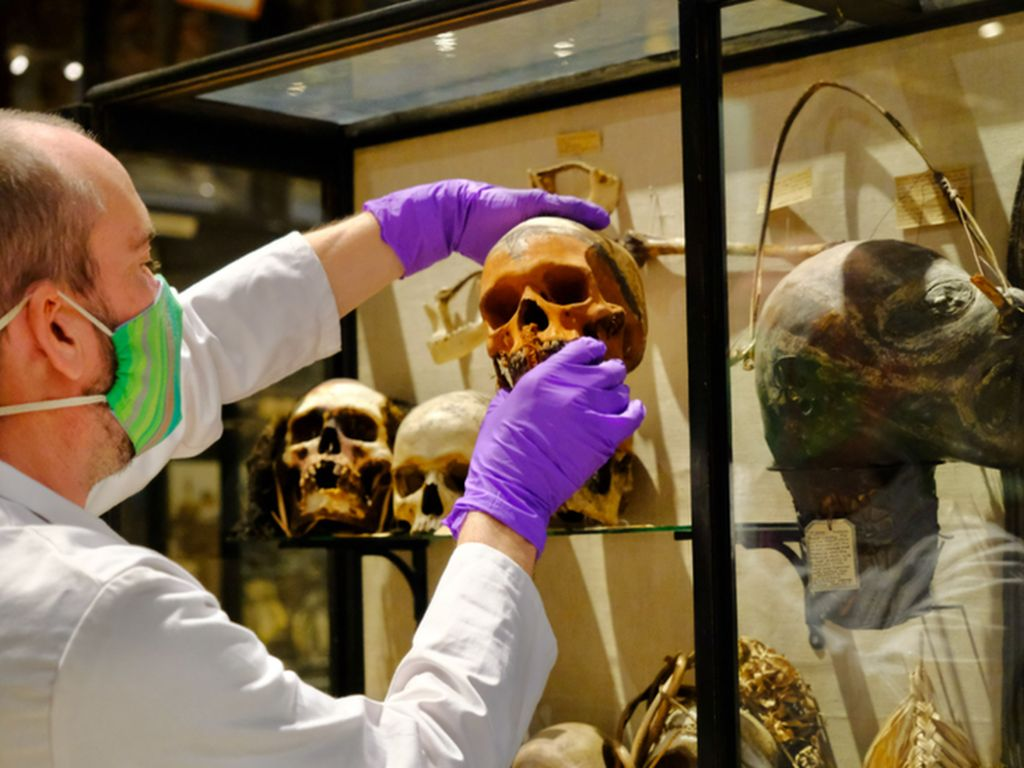 Kepala Mayat Menciut dan Tengkorak Suku Amazon Ditarik dari Museum Oxford