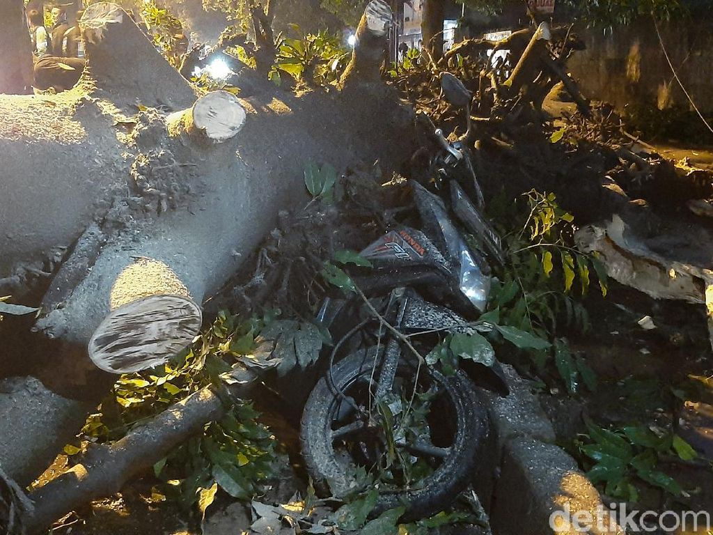 Pohon Tumbang Timpa 8 Motor Driver Ojol di Kota Bogor