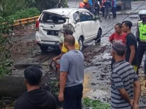 Hujan Angin Terjang Kota Sukabumi, Pohon Tumbang Timpa Mobil