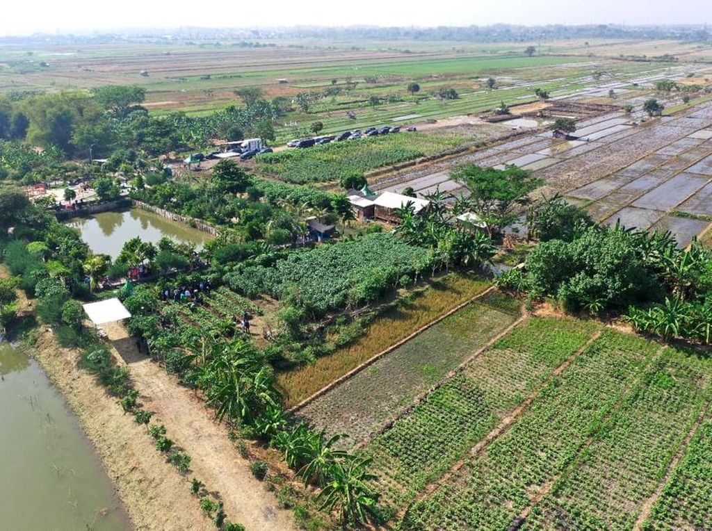 Resesi di Depan Mata, Ini Jurus Risma Selamatkan Surabaya
