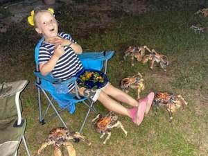 Lagi Asyik Pesta, Keluarga Ini Didatangi Gerombolan Kepiting Raksasa