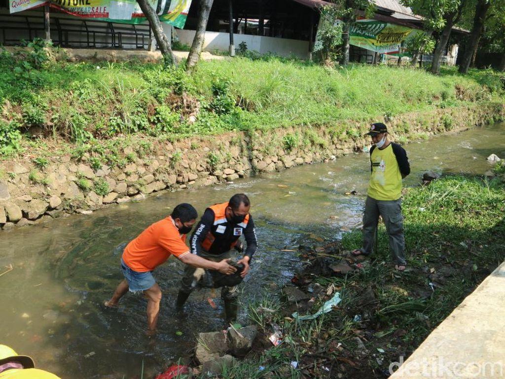 Antisipasi Banjir, Warga Bogor Bersih-bersih Anak Sungai Ciliwung