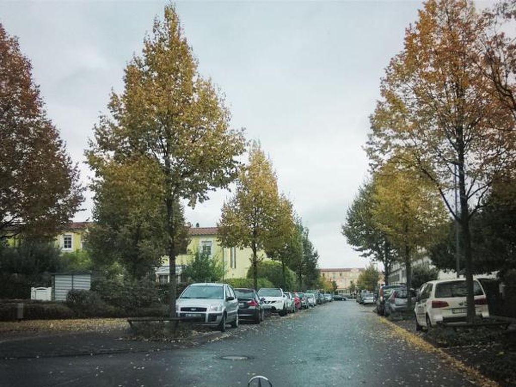 Indahnya Musim Gugur di Jerman