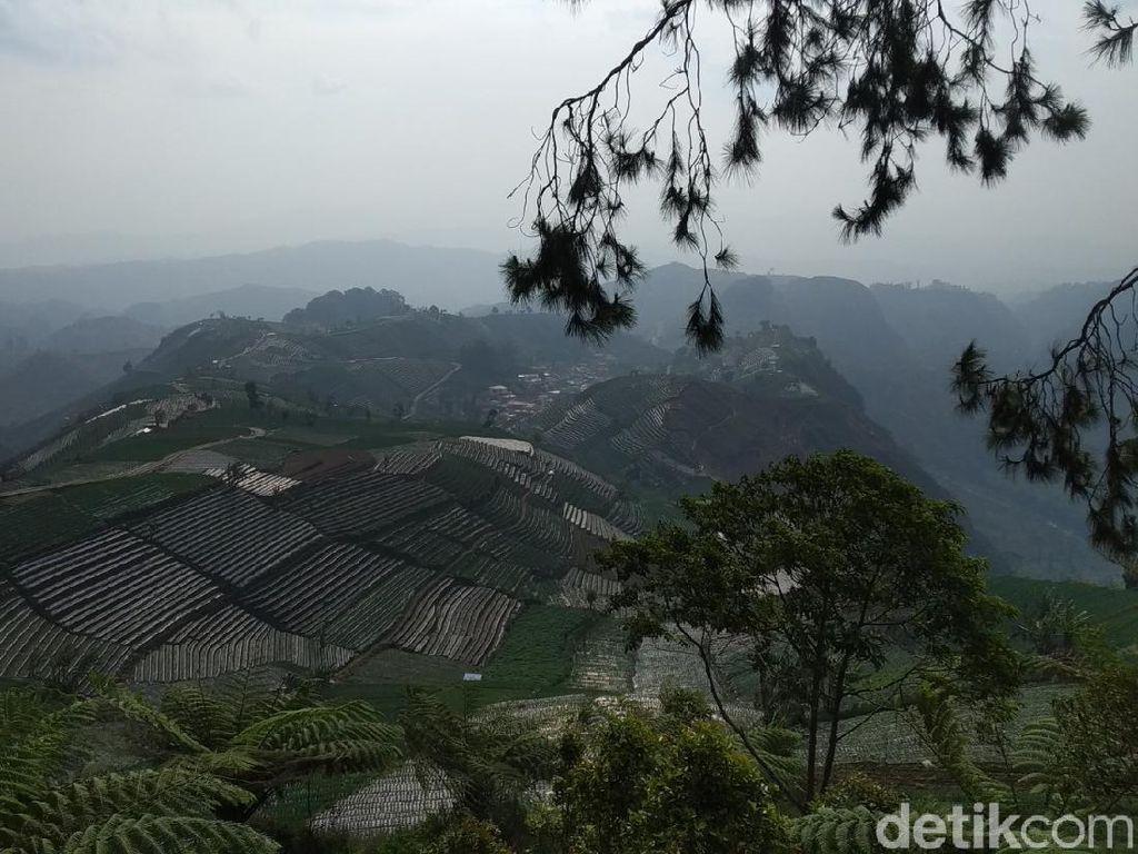 Mitos Siluman Gagak di Balik Keindahan Bukit Mercury