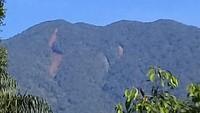 PPKM Diperpanjang, Obwis TN Gunung Halimun Salak Tutup Sementara