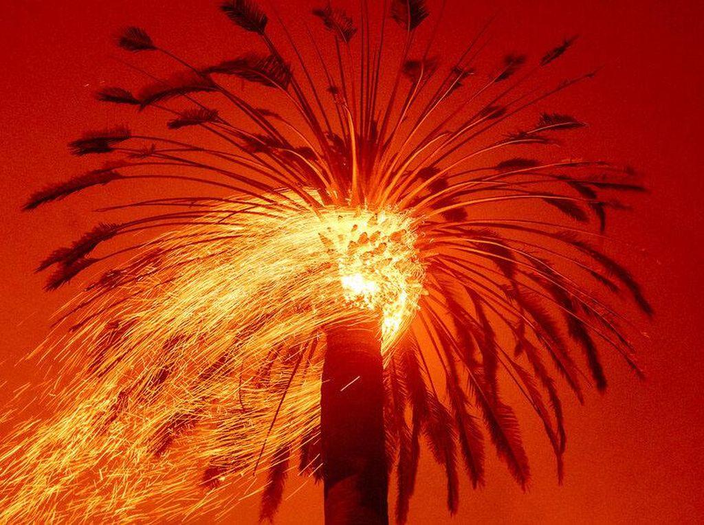 Kebakaran Hebat California Dipicu Perubahan Iklim