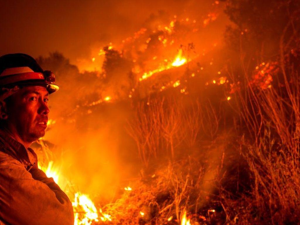 Perubahan Iklim Picu Tren Kebakaran Hutan California