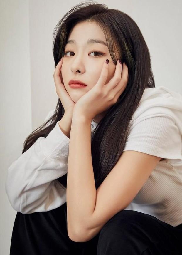 Netizen mengaku dibully oleh Seulgi di sekolah SOPA, namun penggemar mencari tahu dan terbukti tidak benar.