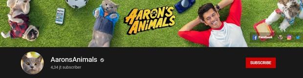 Aaron's Animal