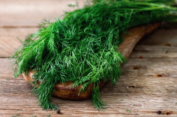 Rasa segar seperti rasa yang terdapat pada seledri dan fennel, menjadikan dill sebagai alternatif pengganti garam yang memberikan aroma untuk masakan kamu.