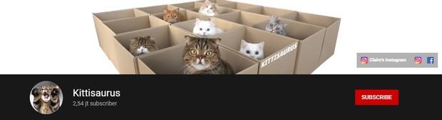 Kitti saurus
