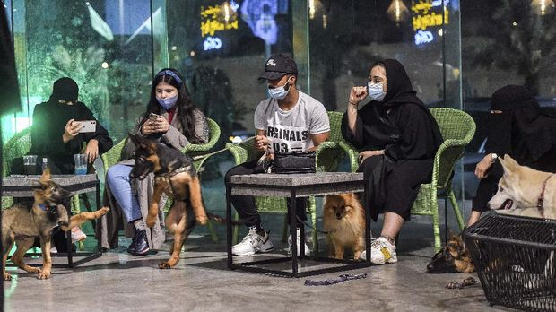 German Shepherds play together as their mask-clad owners (COVID-19 coronavirus pandemic precaution) sit by at the