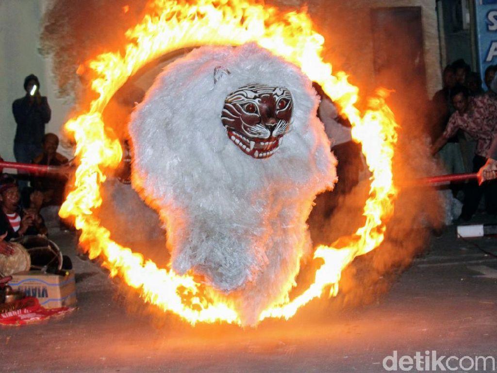 Menguak Legenda Ronteg Singo Ulung, Tokoh Bondowoso Berwujud Singa Putih