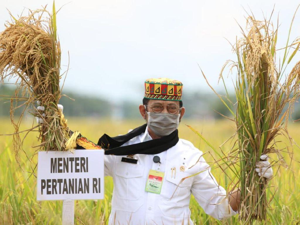 Mentan ke Petani: Terus Bergerak Beri Pangan untuk 200 Juta Orang RI