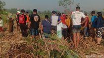 Mayat Perempuan Tinggal Tulang dan Kulit Ditemukan di Kebun Tebu Mojokerto