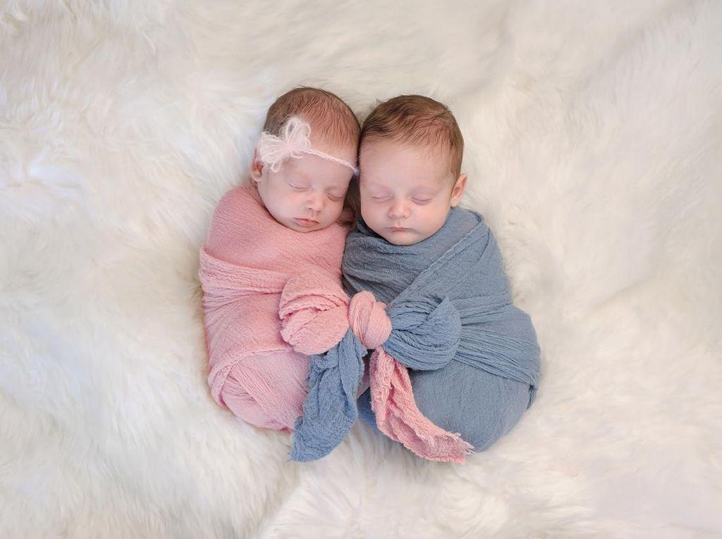 Mitos atau Fakta? Banyak Minum Susu dan Makan Ubi Berpotensi Hamil Anak Kembar
