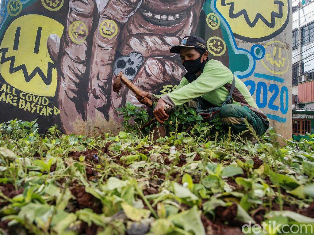Perbaikan Taman yang Rusak di Kebayoran
