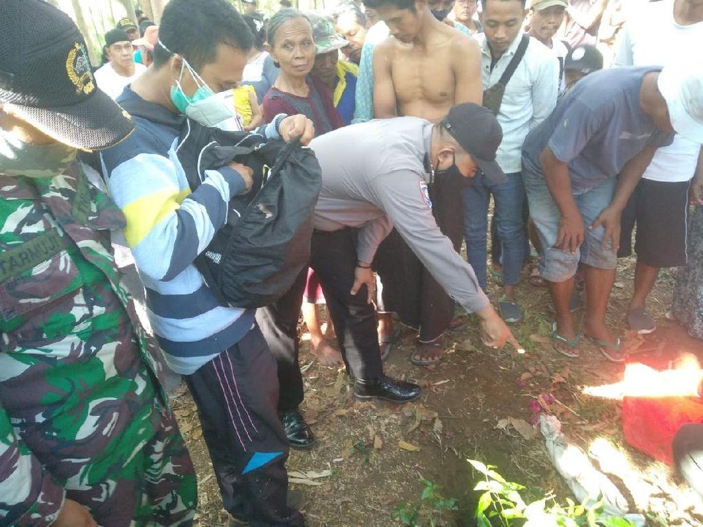 Heboh Penemuan Bayi Terkubur di Lahan Sengon Probolinggo