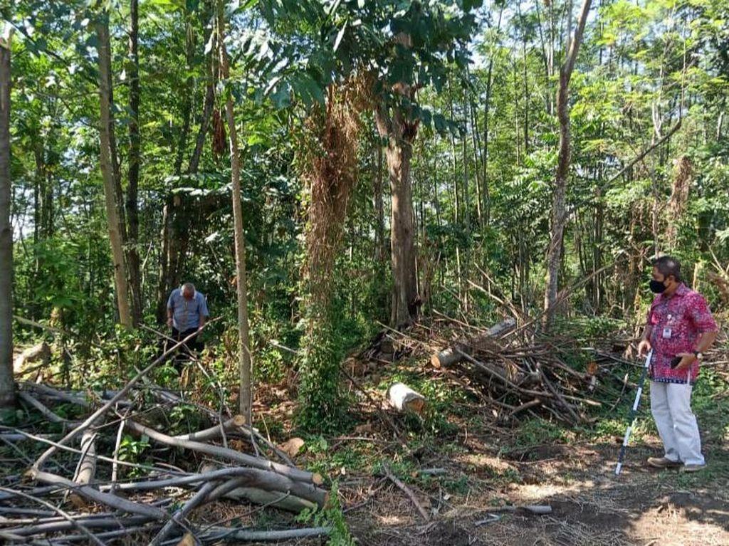 BPCB Jateng Cek Temuan Reruntuk Bebatuan Diduga Candi di Klaten