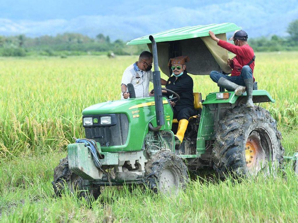 Mentan Cek Potensi Pertanian di Pulau Buru, Produksi 8 Ton Sekali Panen