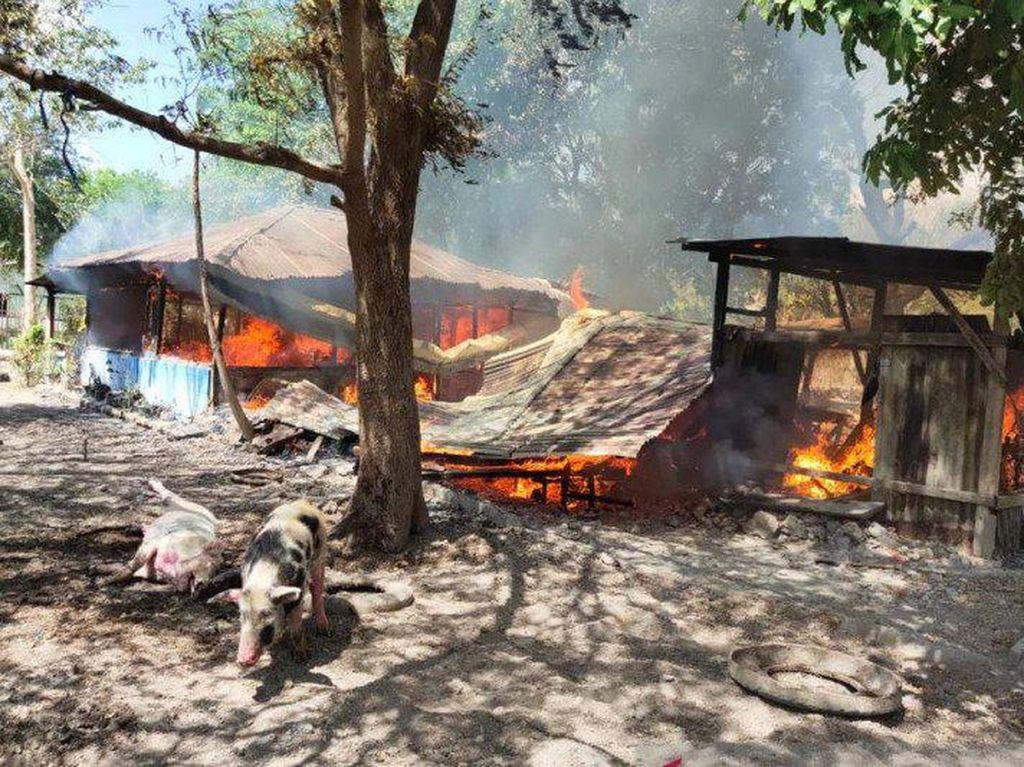 2 Terduga Pembunuh-13 Orang Terkait Pembakaran Rumah di Kupang Ditangkap