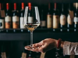 Terbuka Lowongan Pencicip Wine dengan Bayaran Rp 3,8 Juta Per Sesi