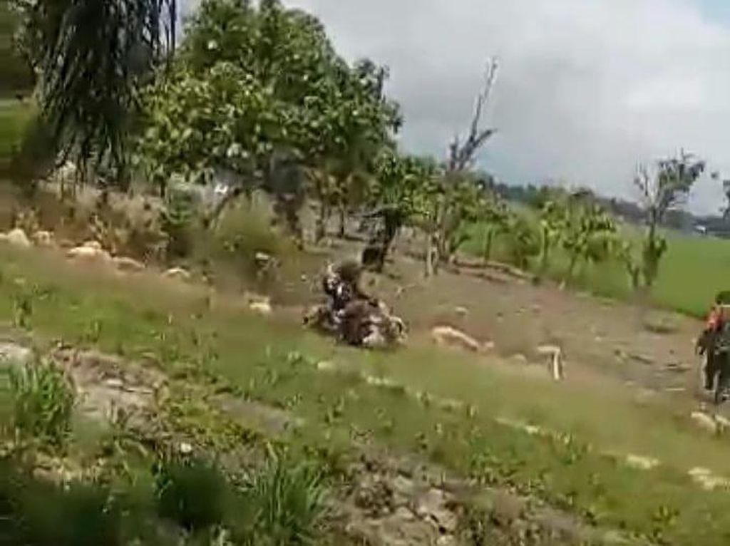 Pria di Sulsel Ditembak Usai Ngamuk Membabi Buta Bacok TNI dan Polisi