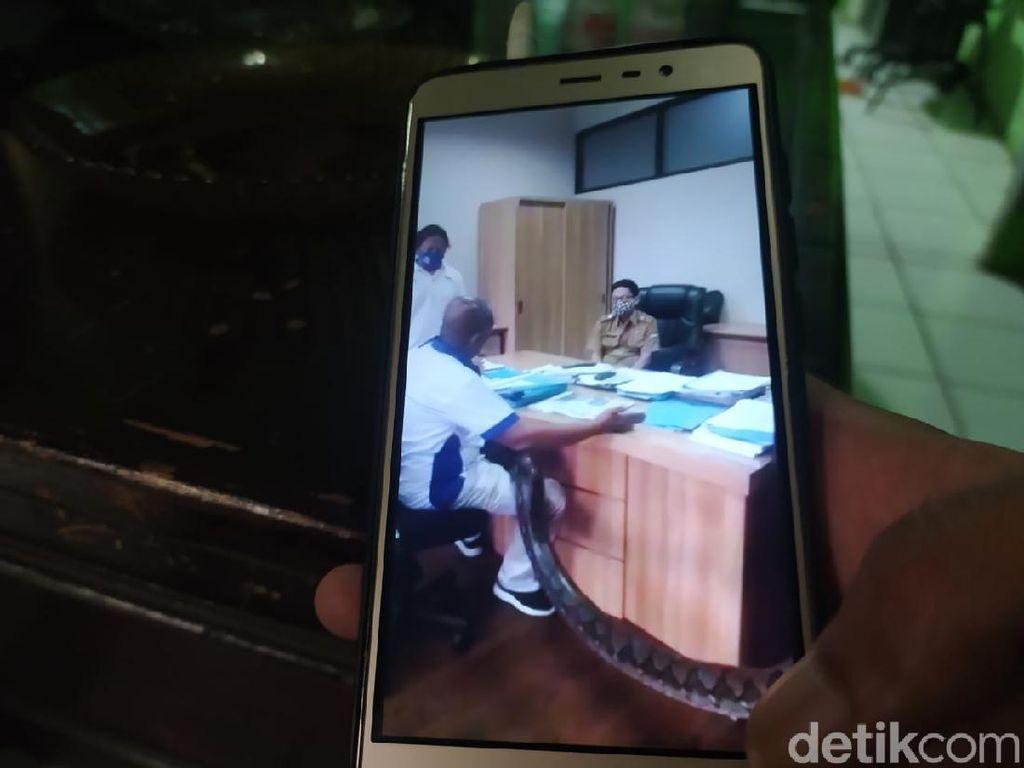 Ancam Kadis PUPR Bandung Barat, Pria Bawa Piton Minta Jatah Proyek