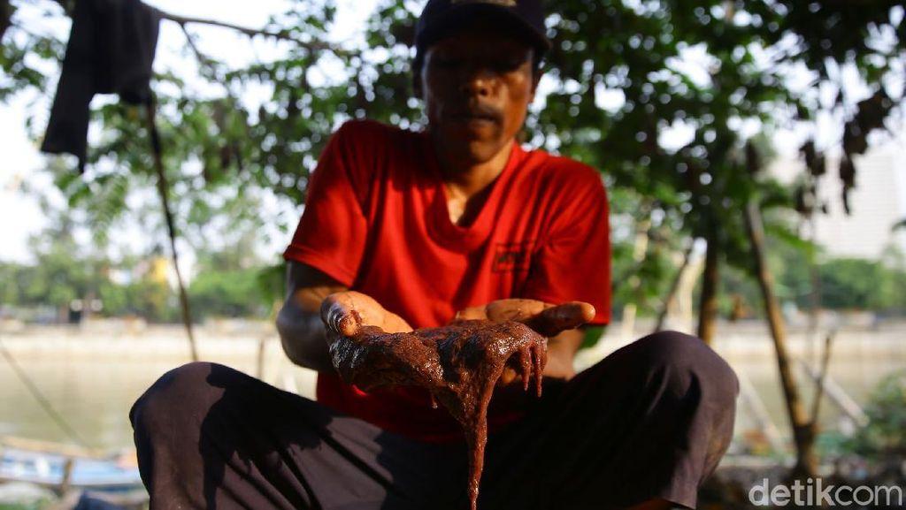 Berkah Kampung Cacing di Tengah Pandemi