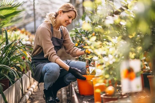 Berkebun bisa mengisi me time.