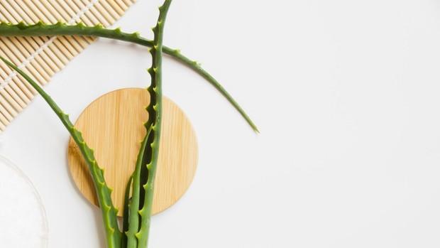 gel lidah buaya yang dicampur gula merah dan extra virgin oil olive dapat digunakan sebagai scrub alami untuk merawat wajah