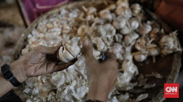 Pedagang bawang putih menjajakan dagangannya di Pasar Induk Kramat Jati. Jakarta, Sabtu, 10 Oktober 2020.CNN Indonesia/ Adhi Wicaksono