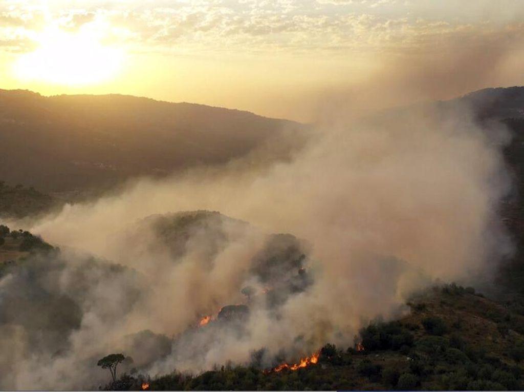 3 Orang Tewas Imbas Kebakaran Hutan di Perbatasan Lebanon